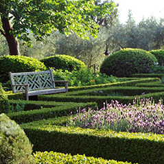 The herb garden in early spring.