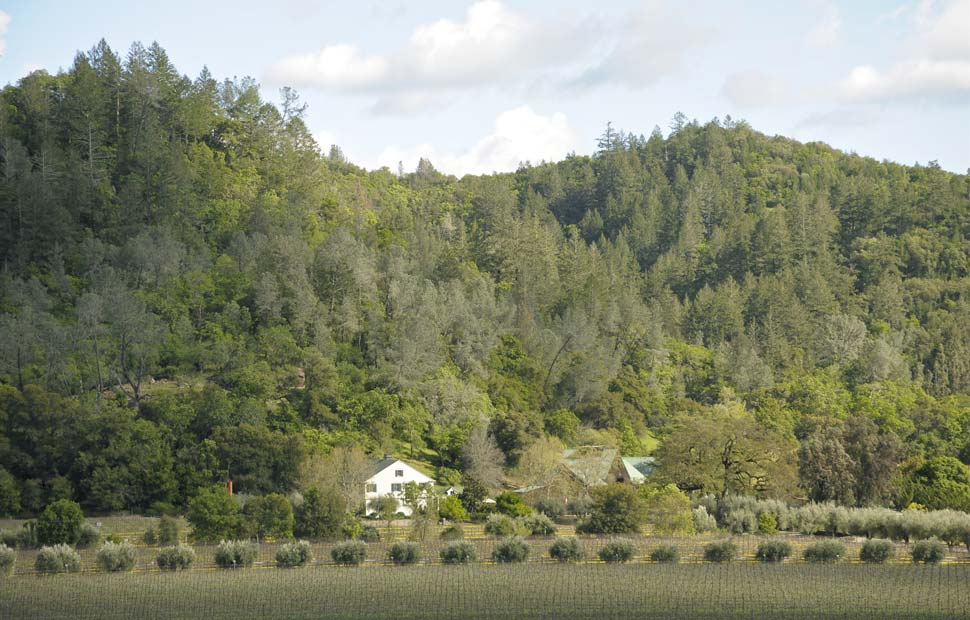 Araujo Estate Wines